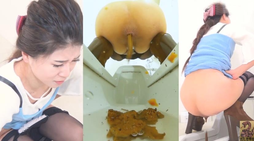 Pooping Woman in Public Toilet and Spy Camera トイレスパイカメラのうんち 2019 (BFSR-231) [FullHD/1920x1080]